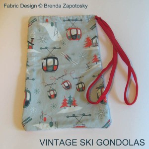 Alpine Classic Goggle Bag by Brenda Zapotosky WORDS