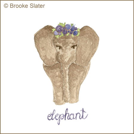 Elephant by Brooke Slater small