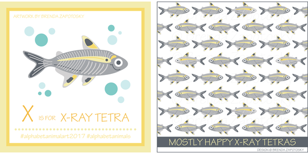 X Ray Tetra Illustration by Brenda Zapotosky